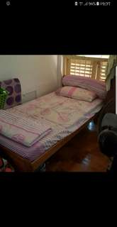 Sharing room in toa payoh central