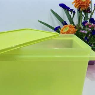 AUTHENTIC big Tupperware Container (green)