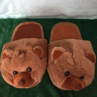 Rare Bear Slippers