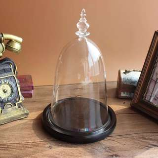 Bell jar beauty and the beast glass dome preseved rose