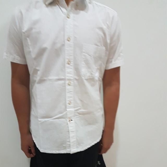 Kemeja Putih Polos Celcius, Men's Fashion, Men's Clothes, Tops on Carousell