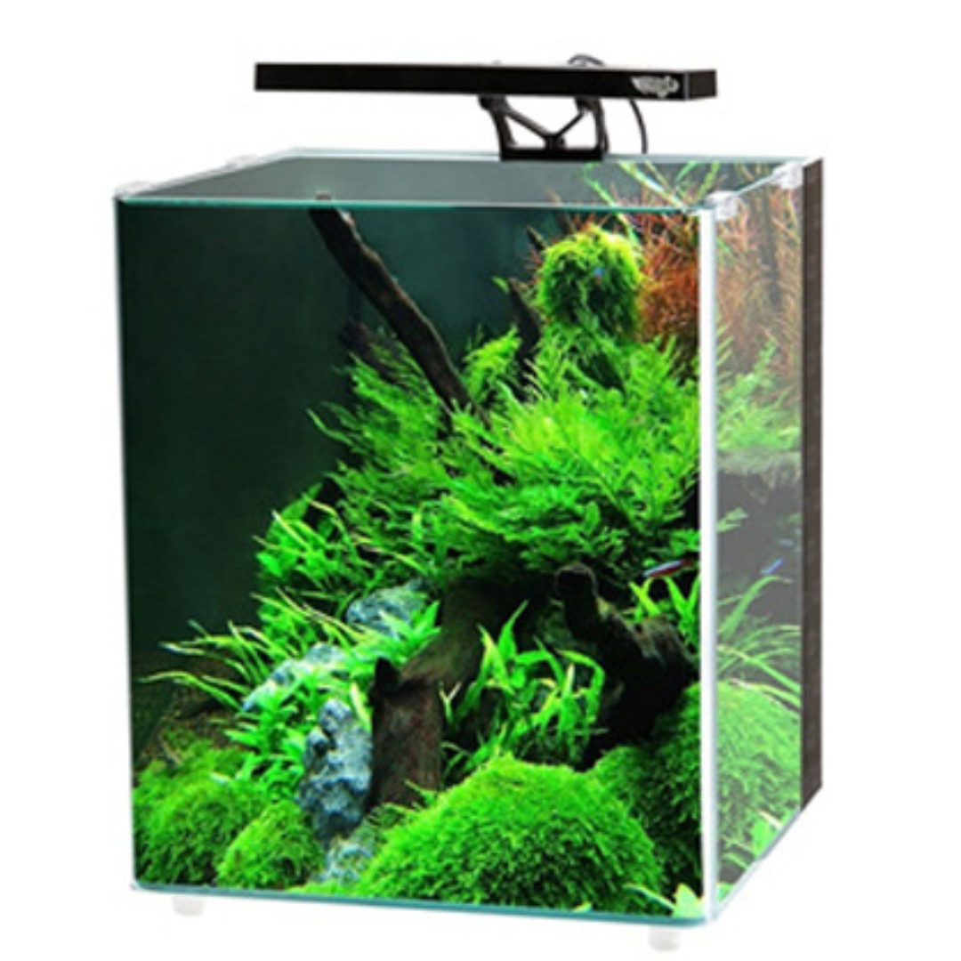 lighting filter rainbow tank aquarium and led builtin built in fish lights with photo p