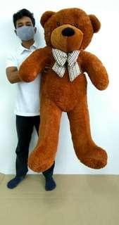 Teddy Bear besar.
