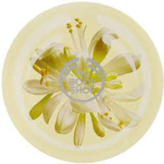 The Body Shop - Moringa Body Butter 200ml