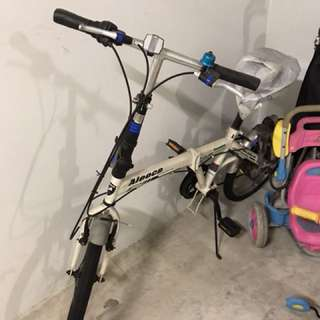 Aleoca folding bike