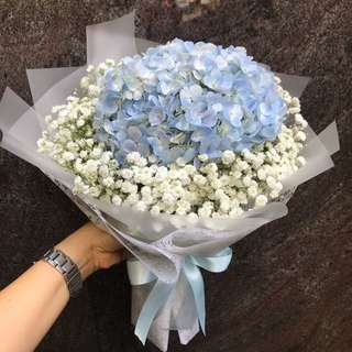 Blue Hydrangea and baby breath Hand Bouquet