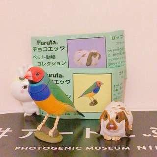 日本擬真動物🐰