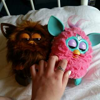 Furby and Furbacca