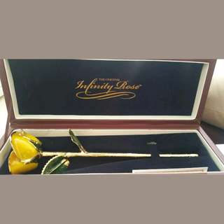 24 karat gold dipped infinity rose in yellow