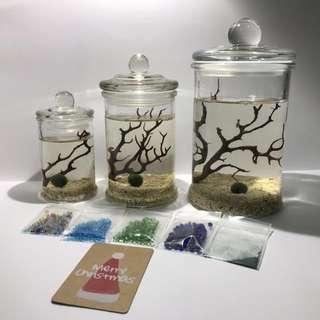 (M) Natural Series (Opae Ula Setup)