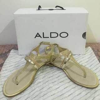 REPRICED‼️ Olivetta Shoe Nails by Aldo