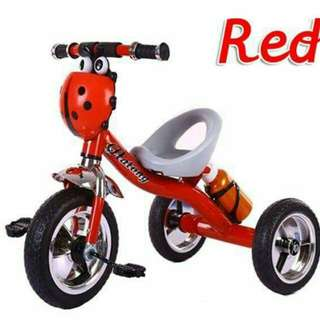 New ladybird tricycle
