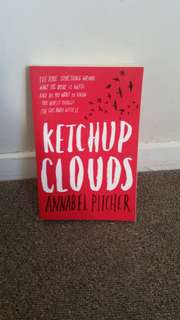 Ketchup Clouds Annabel Pitcher