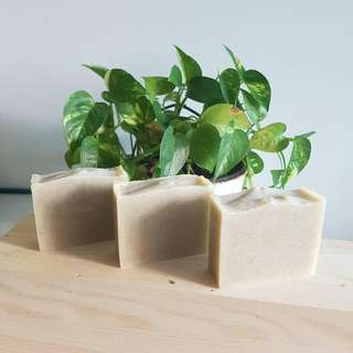 Camellia & Shea Butter Soap (Natural Handmade Cold Process)