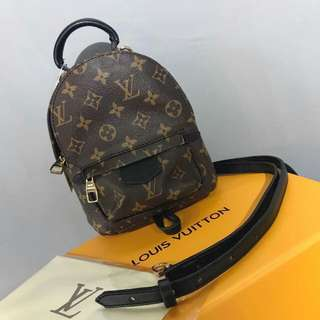 Louis Vuitton Mini Backpack Monogram