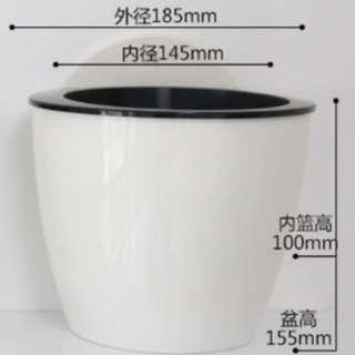 Self-watering/hydroponics hanging pot
