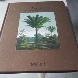 Palms Carl Friedrich Phillipp von Marius