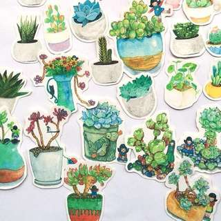 Plant stickers🌿 set of 36