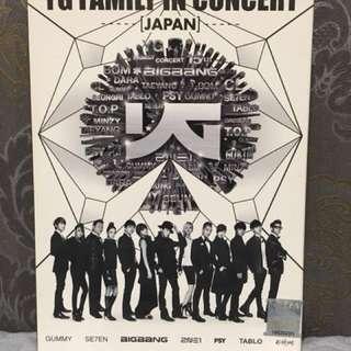 YG Family Concert (Japan)