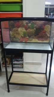 Plastic Fish Tank and Metal Stand