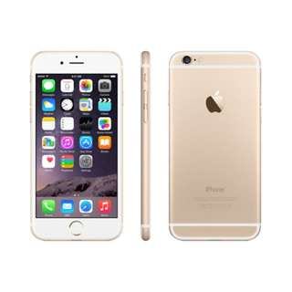 Iphone6(gold)