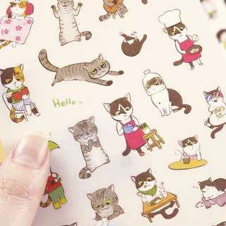 Cat's Life stickers✨(set of 6 sheets)