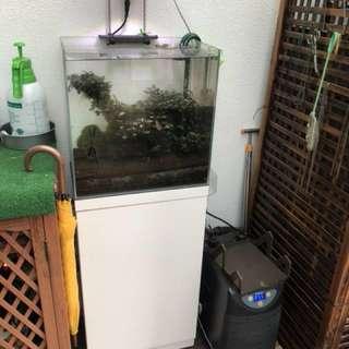 Shrimp Tank set with chiller