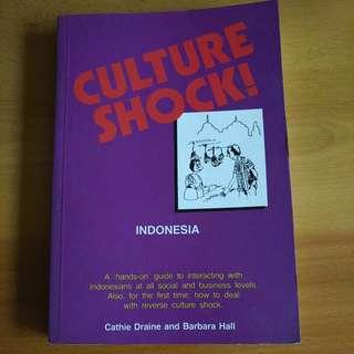 Culture Shock: Indonesia