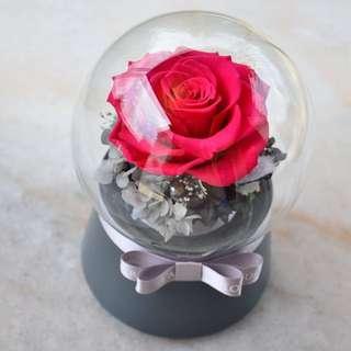 Preserved flower