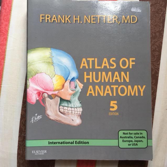 Netter Atlas Of Human Anatomy Textbooks On Carousell