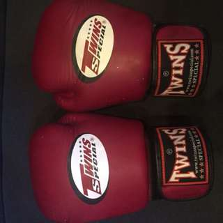 12oz Twins Boxing gloves