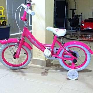 Princess Pink Bicycle 16 Inch