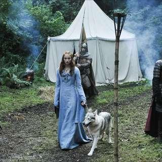 Game Of Thrones - Sansa Stark Costume - reduced