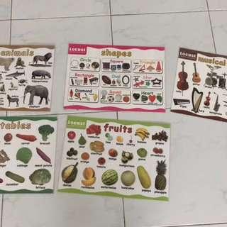 Locust Laminated Educational Posters (set of 5)