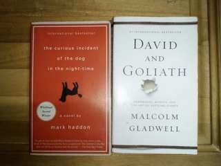 2 BOOKS for 399 only!! David n Goliath/Curious incident of the dog in the nightime