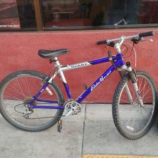 *Giant Eddie Bauer Edition Mountain Bike*