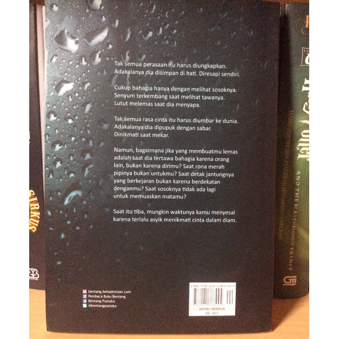 Jatuh Cinta Diam Diam 2 Dwitasari Friends Books