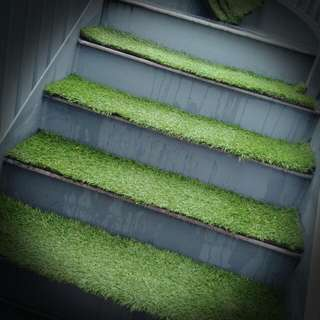 Premium Synthetic Carpet Grass - Pre-cut for Stairs/Steps