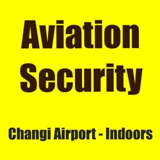 Aviation Security Officer