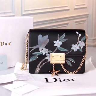 Christian Dior Sling Bag