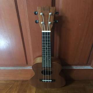 Ukelele c/w free delivery