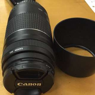 Canon EF 75-300 f/4.5-5.6 Telephoto Zoom