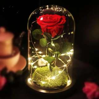 Preserved rose fairy lights anniversary gift birthday present gift proposal engagement