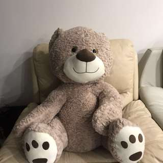 Brown Bear from Carnival