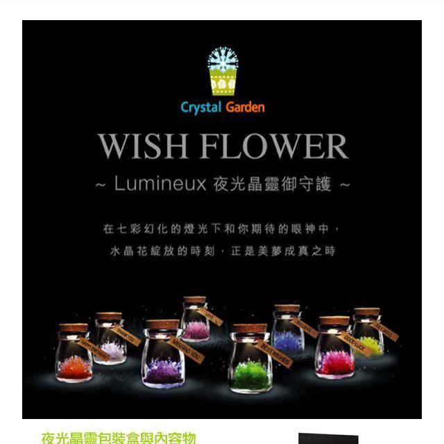 夜光晶靈 玻璃/花/Wish flower