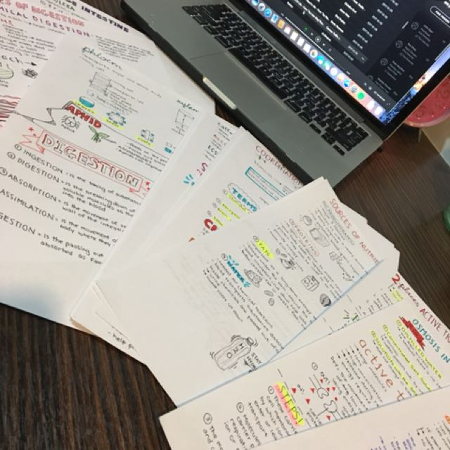 Biology notes for IGCSE, covers the entire syllabus