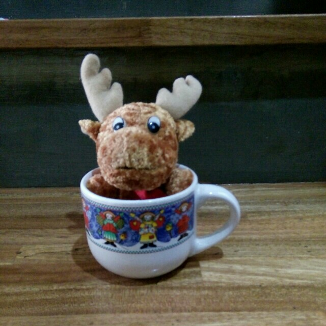 Stuff toy in a mug