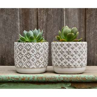 Concrete and White Modern Patterned Plant Pot Planters