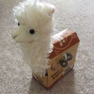Wind up Alpaca