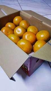 甜度高!安全蔬果認証🍊柑甘好橘🍊大橘